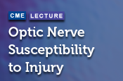 Optic Nerve Susceptibility to Injury