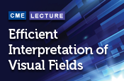 Efficient Interpretation of Visual Fields