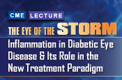 The Eye of the Storm: Inflammation in Diabetic Eye Disease and Its Role in the New Treatment Paradigm