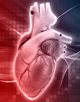 Cardiovascular Consults®: Focus on Minimizing CV Risk in Patients with Diabetes