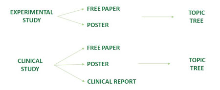 Abstract submission diagram