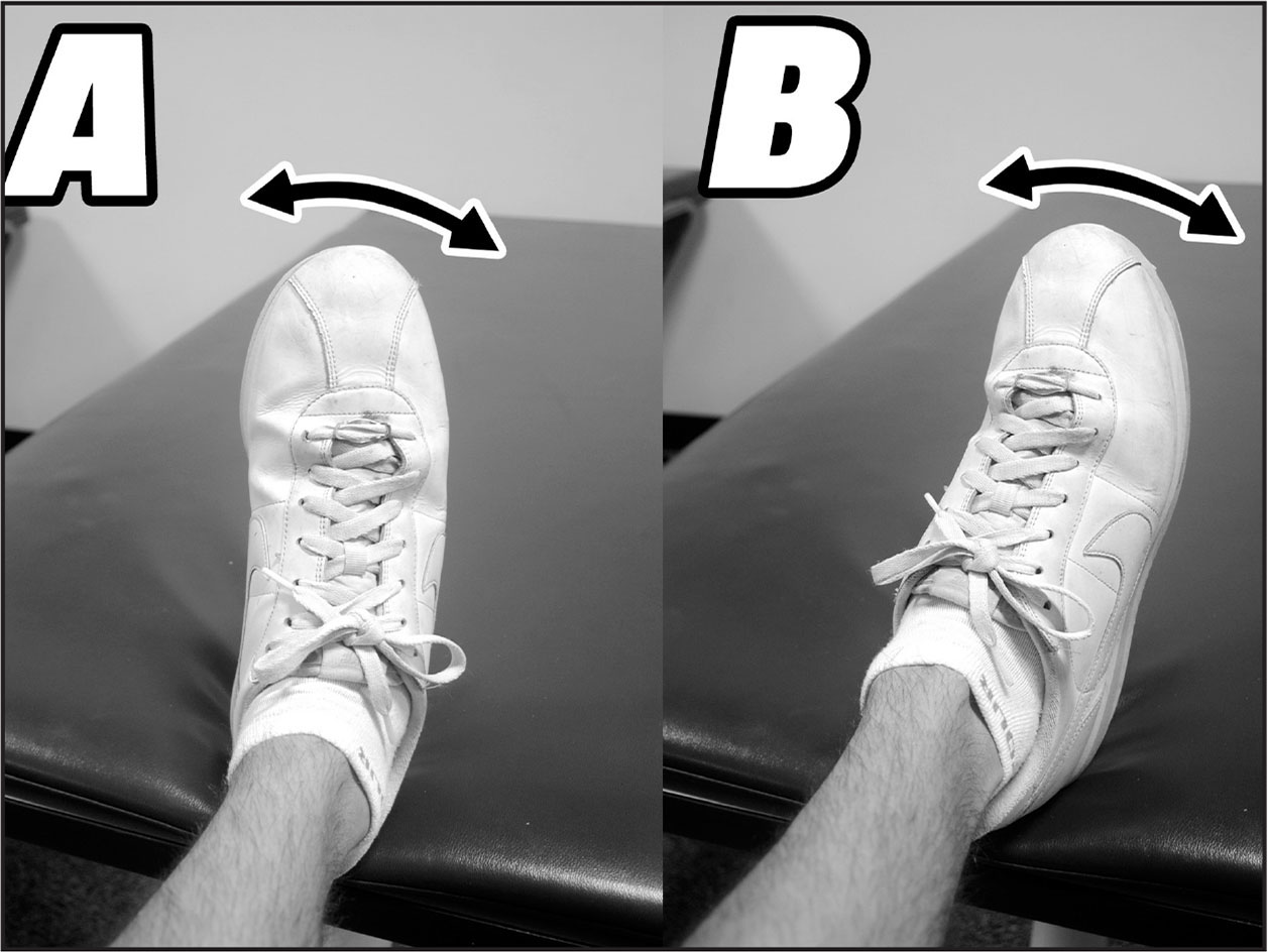 While the thigh and lower leg remain steady, the ankle is actively moved into (A) inversion and (B) eversion.