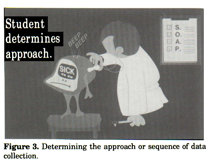 Figure 3. Determining the approach or sequence of data collection.