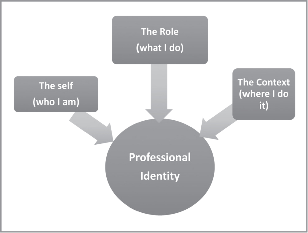 Synthesized findings related to professional identity.