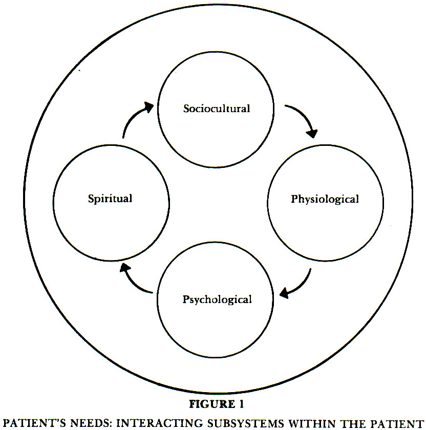 FIGURE 1PATIENT'S NEEDS: INTERACTING SUBSYSTEMS WITHIN THE PATIENT
