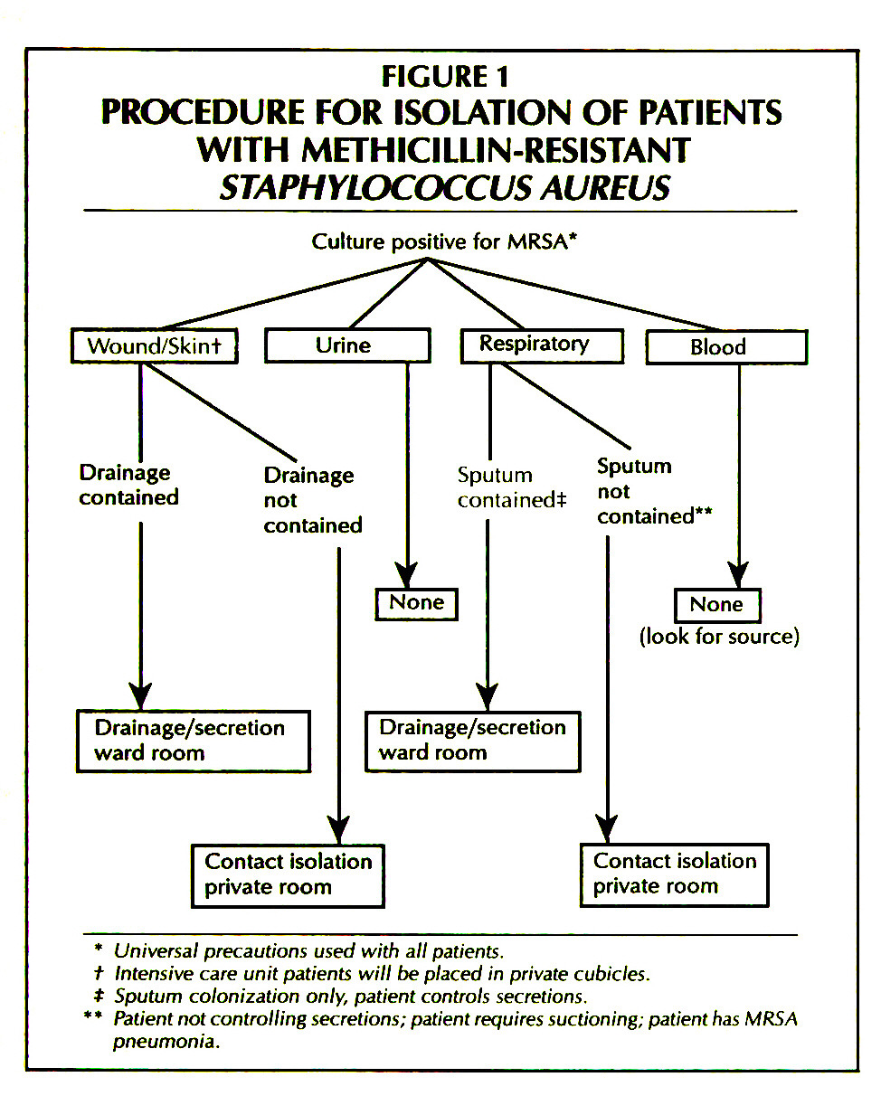 FIGURE 1PROCEDURE FOR ISOLATION OF PATIENTS WITH METHICILLIN-RESISTANT STAPHYLOCOCCUS AUREUS