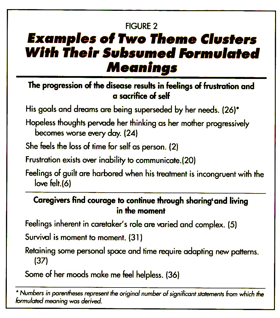 FIGURE 2Examples of IWo Theme Clusters With Their Subsumed formulated Meanings
