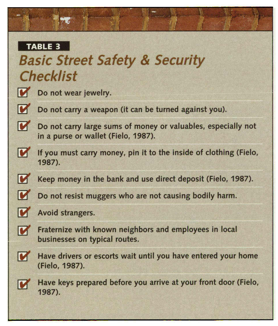 TABLE 3Basic Street Safety & Security Checklist