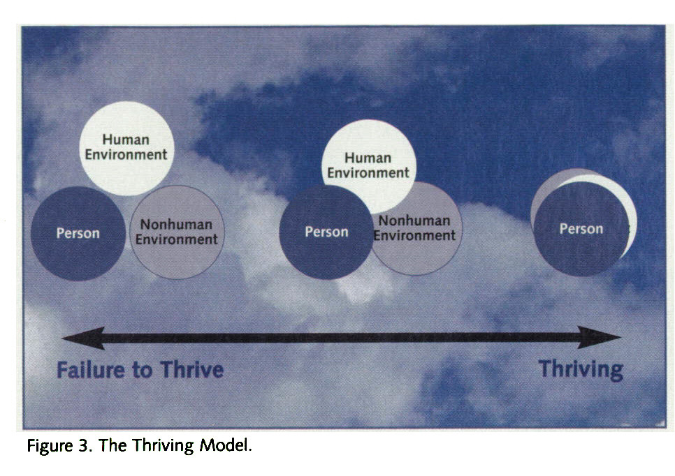 Figure 3. The Thriving Model.