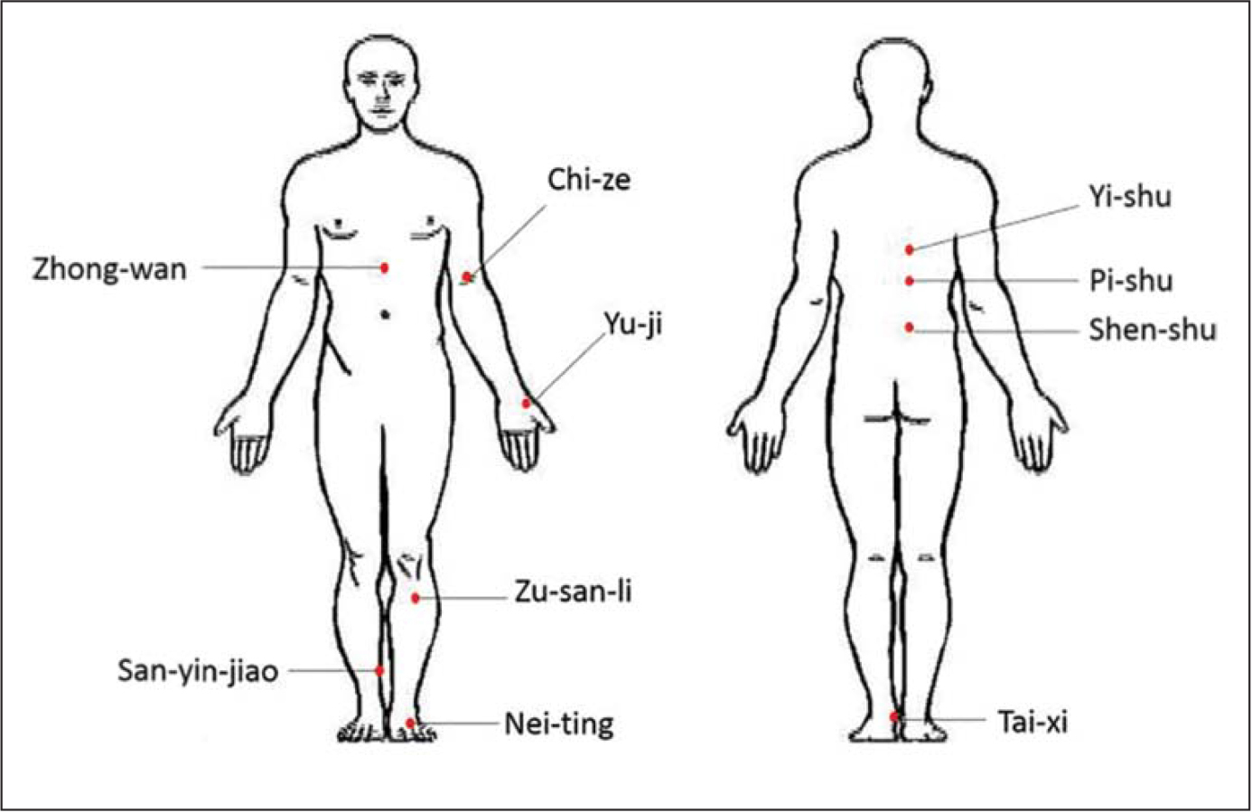 Schematic diagram of massage acupoints.