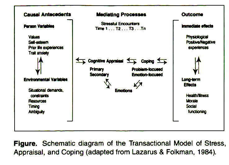 coping skill and lazarus stress theory Stress and the coping process dr lazarus and his collaborator, dr susan folkman, present here a detailed theory of psychological stress stress, appraisal.