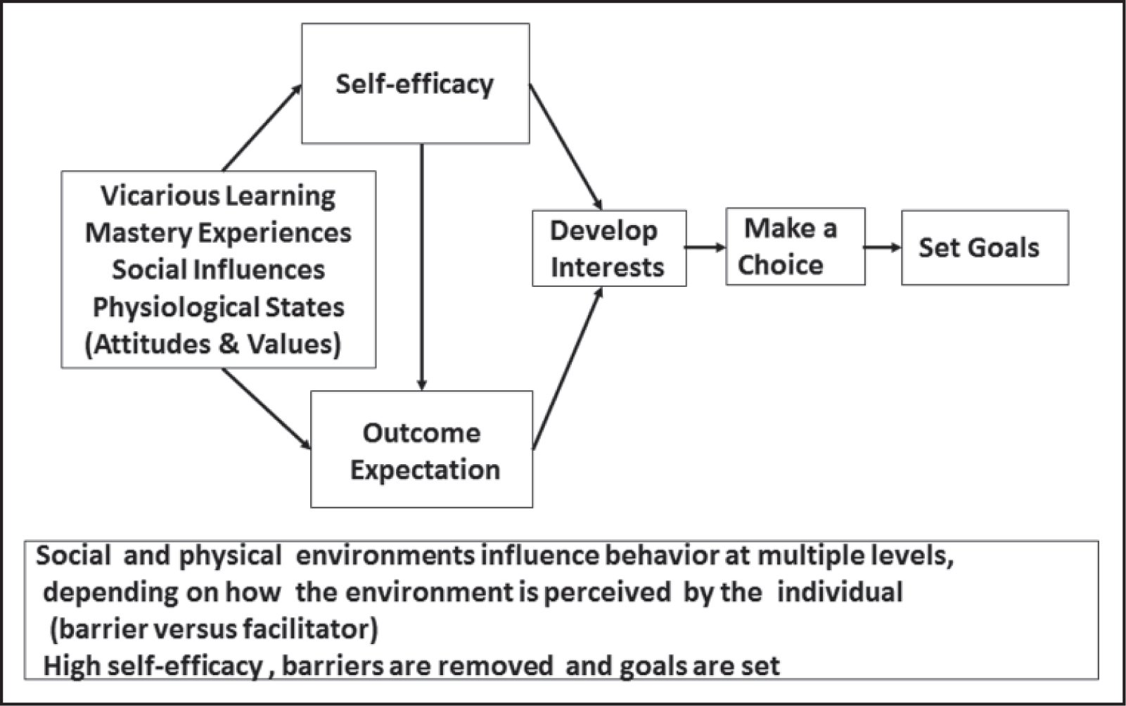 Conceptual framework for the social cognitive theory.