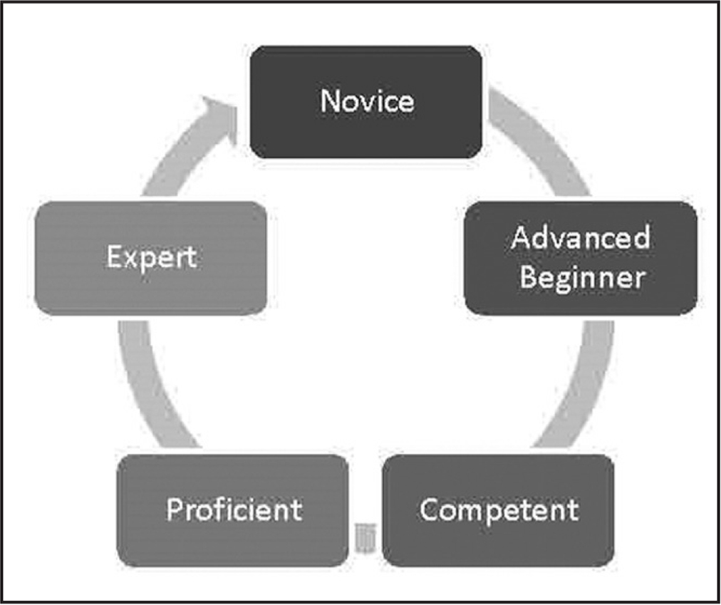 Novice-to-expert directional model.