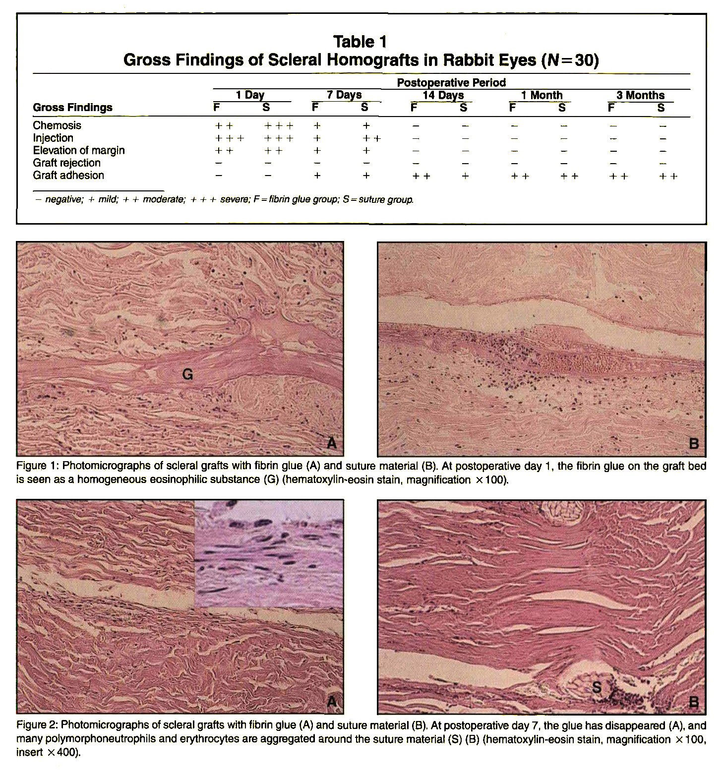 Comparison of Histologic Findings in Wound Healing of Rabbit