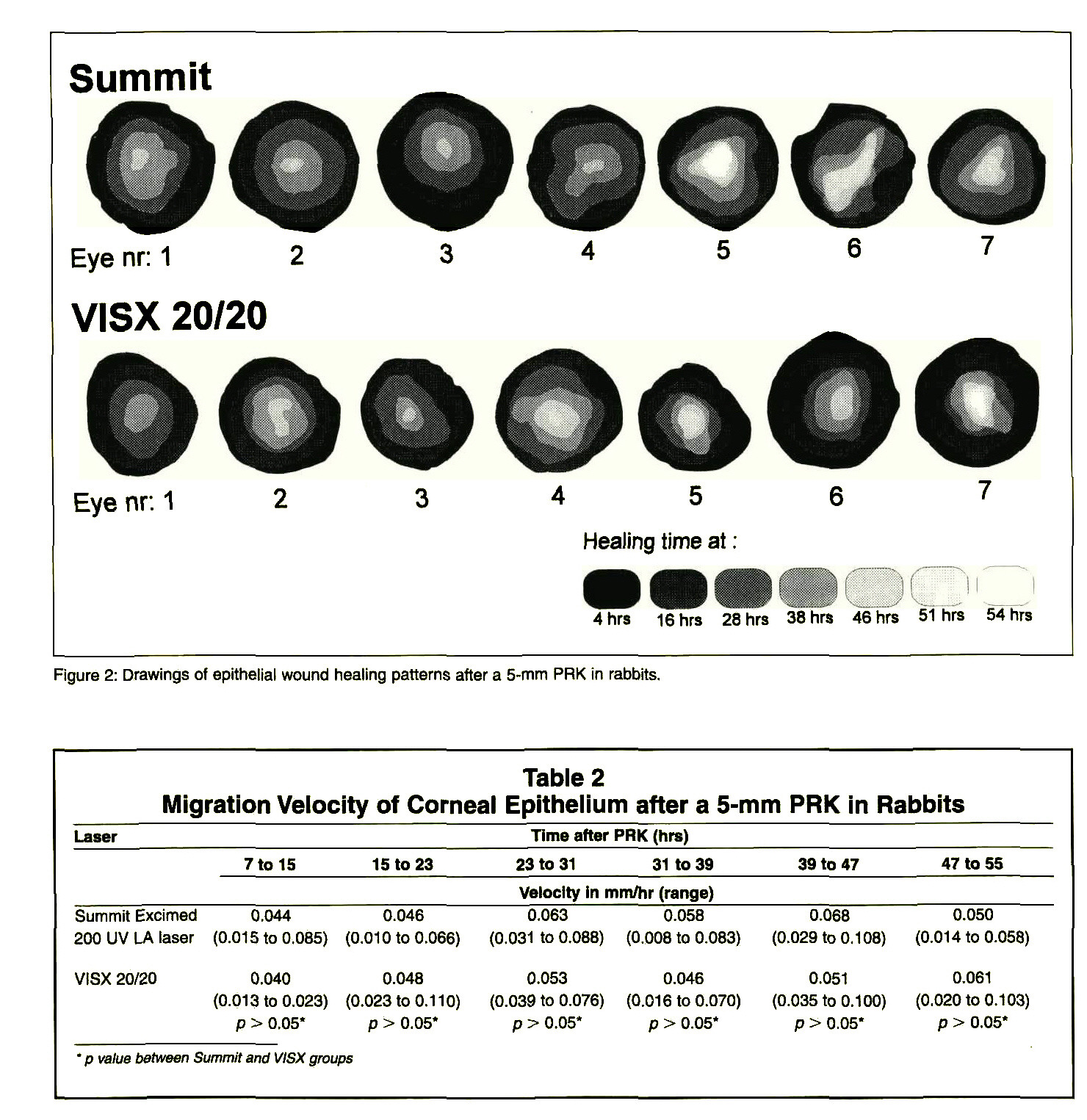 Figure 2: Drawings of epithelial wound healing patterns after a 5-mm PRK in rabbits.Table 2Migration Velocity of Corneal Epithelium after a 5-mm PRK in Rabbits