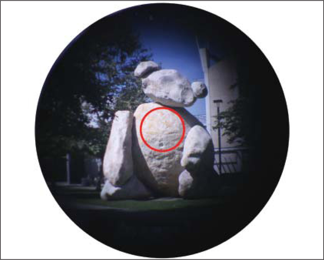 Image of the stone bear on the University of California–San Diego campus. The object is approximately 25 m from the optomechanical eye model. The darkening around the edges is caused by the limitation of the numerical aperture of the fiber and its inability to couple light efficiently at high fields of view, similar to the Stiles-Crawford effect. The red circular area represents the equivalent of the macular region in the human eye.