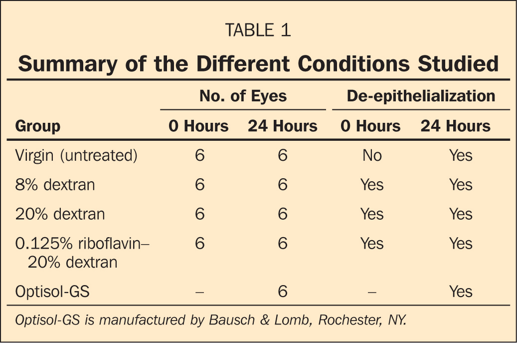 Summary of the Different Conditions Studied