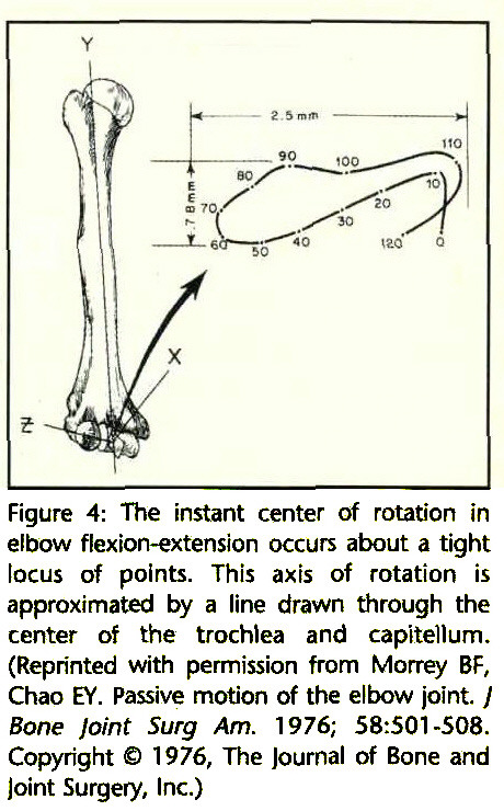 Elbow Joint Biomechanics: Basic Science and Clinical Applications