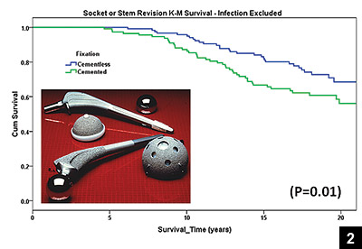 Figure 2: Survivorship curve
