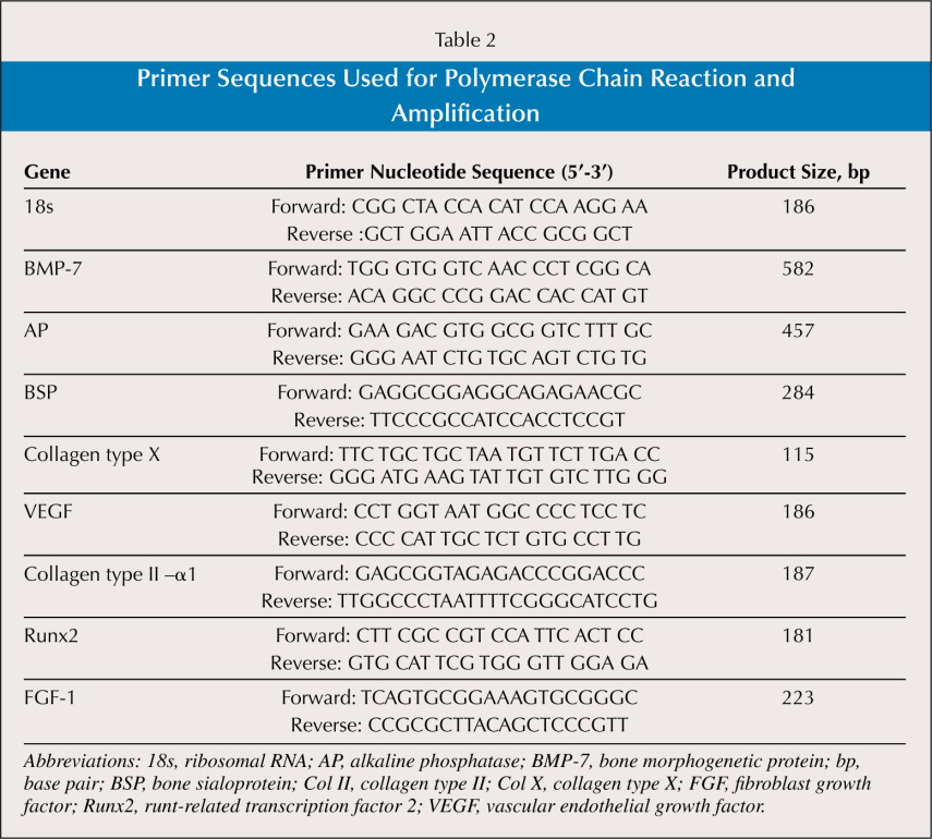 Primer Sequences Used for Polymerase Chain Reaction and Amplification