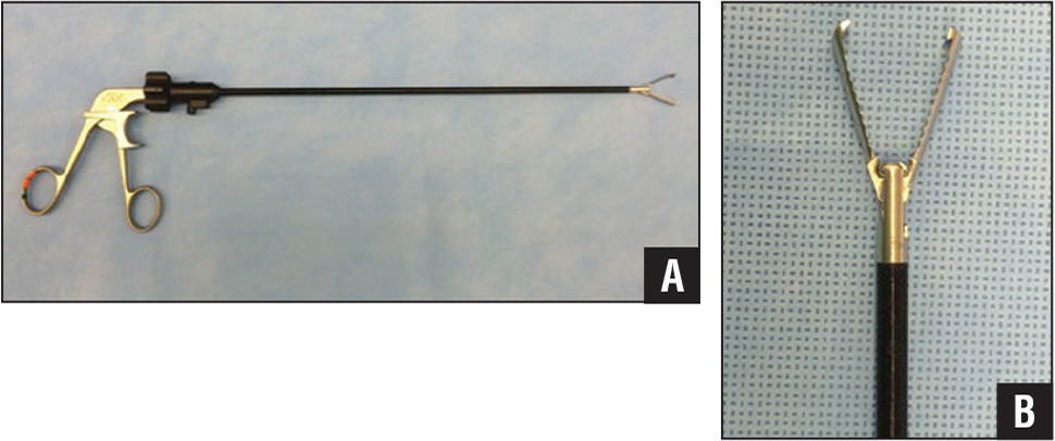 Full-length (A) and close-up (B) clinical photographs of an endoscopic grasper (Encision, Boulder, Colorado).