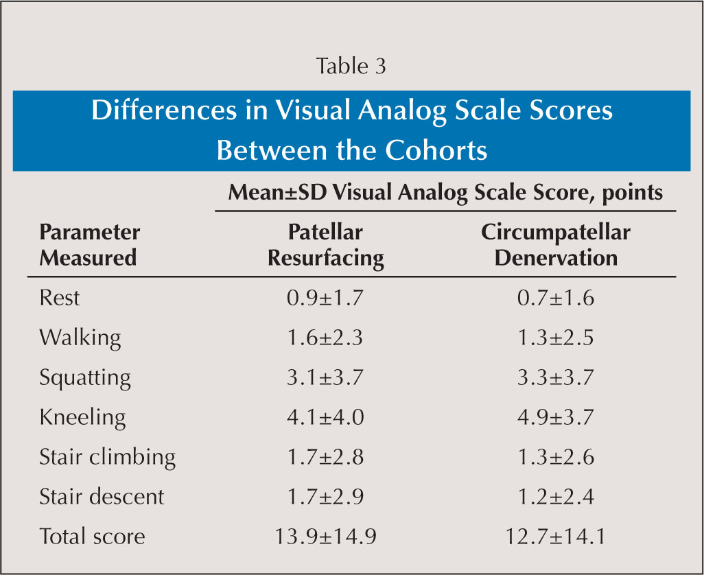Differences in Visual Analog Scale Scores Between the Cohorts