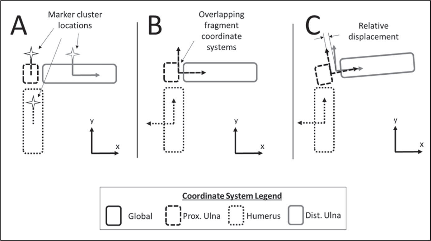 Schematic showing the steps taken to calculate diastasis. Marker clusters are attached to each body, and coordinate systems are assigned to the clusters (A). Virtual coordinate systems are created, relative to the proximal (Prox.) and distal (Dist.) ulna fragments, and placed directly on top of each other (B). Relative motion between the ulnar fragments moves the virtual coordinate systems, and the distance between them is calculated (C).