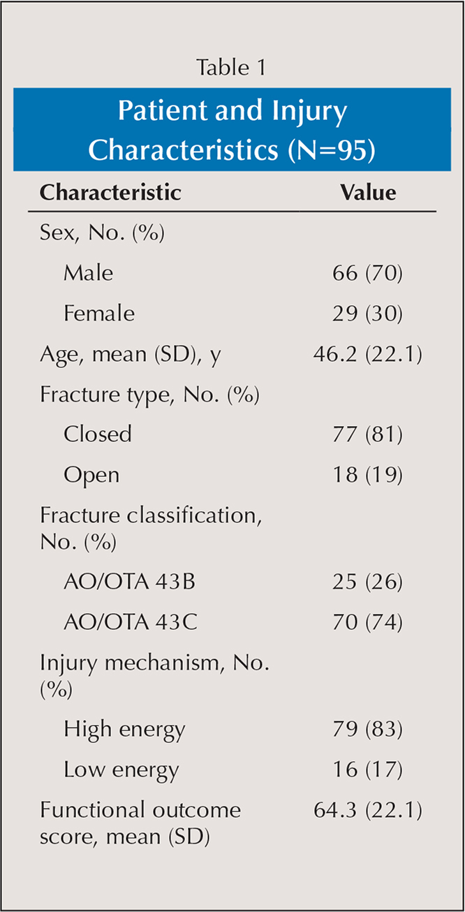 Patient and Injury Characteristics (N=95)