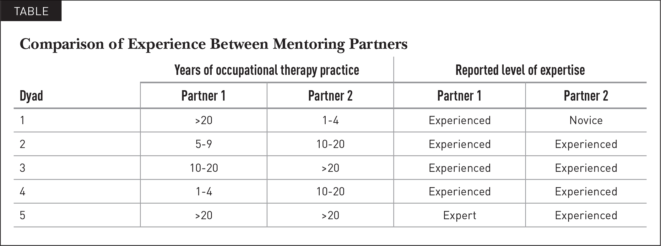 Comparison of Experience Between Mentoring Partners