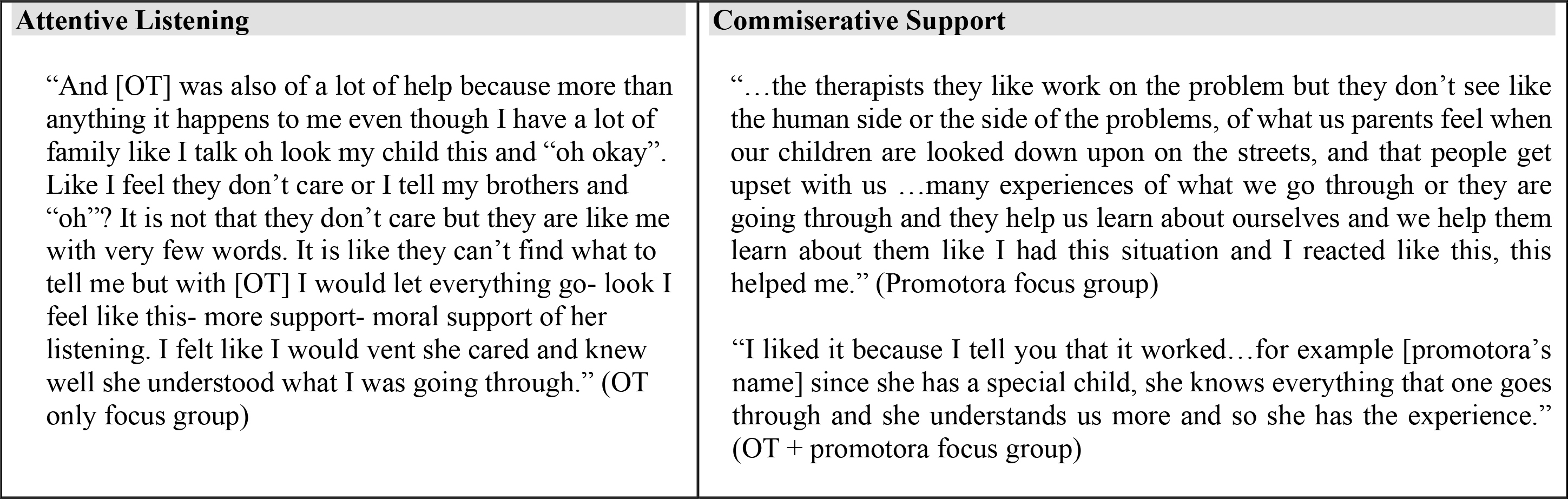 Examples of Different Forms of Support offered by the Occupational Therapist and the Promotoras