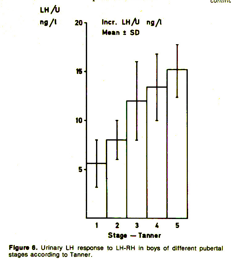 Figure 6. Urinary LH response to LH-RH in boys of different pubertal stages according to Tanner.