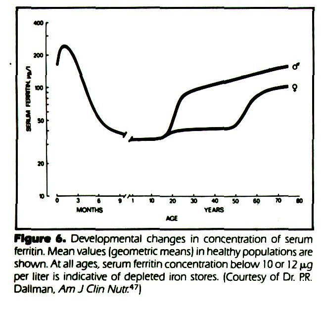 Figure 6. Developmental changes in concentration of serum ferritin. Mean values (geometric means) in healthy populations are shown. At all ages, serum ferritin concentration below 10 or 12 µ-g per liter is indicative of depleted iron stores. (Courtesy of Dr. PR. Dallman, Am J Clin Nutr.47)