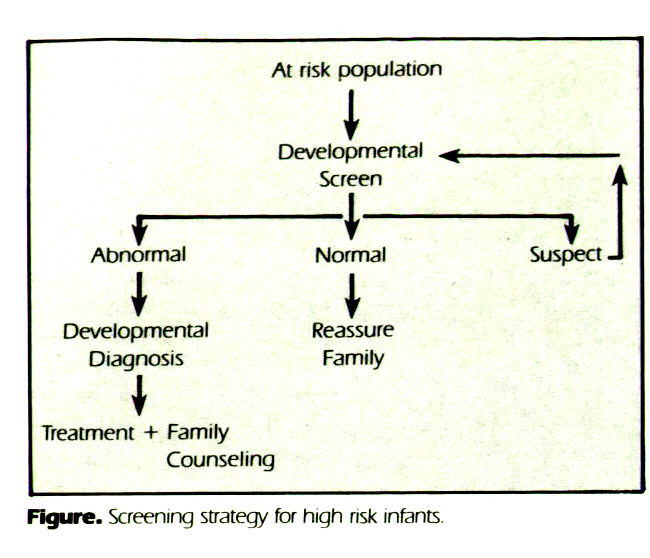 Figure. Screening strategy for high risk infants.