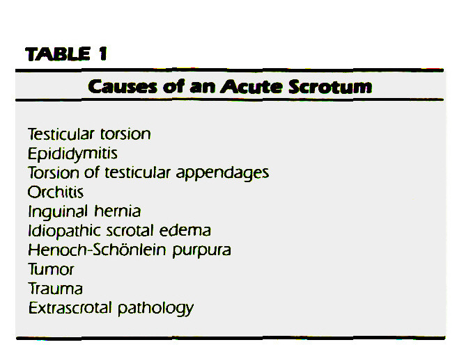 TABLE 1Causes off an Acute Scrotum