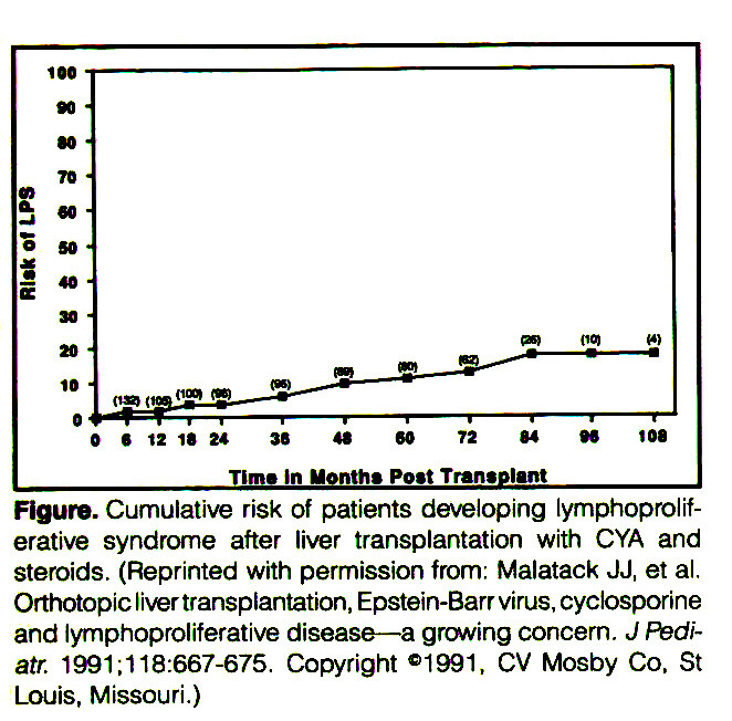 Figure. Cumulative risk of patients developing lymphoproliferative syndrome after liver transplantation with CYA and steroids. (Reprinted with permission from: Malatack JJ, et al. Orthotopicliver transplantation, Epstein-Barr virus, cyclosporine and lymphoproliferative disease- a growing concern. J Peuiatr. 1991:118:667-675. Copyright «1991, CV Mosby Co. St Louis, Missouri.)