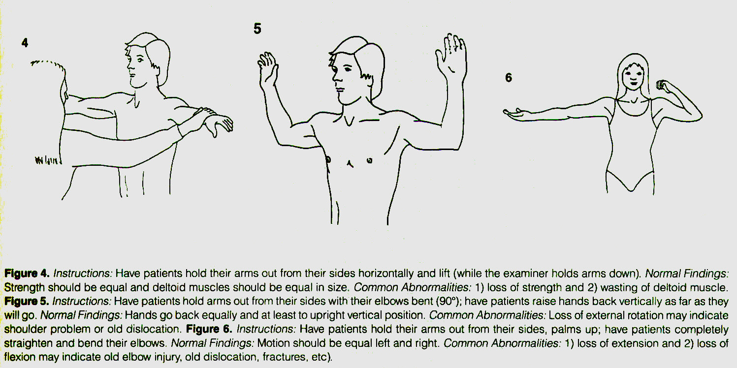 Figure 4. Instructions: Have patients hold their arms out from their sides horizontally and lift (while the examiner holds arms down). Normal Findings: Strength should be equal and deltoid muscles should be equal in size. Common Abnormalities: 1) loss of strength and 2) wasting of deltoid muscle. Figure 5. Instructions: Have patients hold arms out from their sides with their elbows bent (90°); have patients raise hands back vertically as far as they will go. Normal Findings: Hands go back equally and at least to upright vertical position. Common Abnormalities: Loss of external rotation may indicate shoulder problem or old dislocation. Figure 6. Instructions: Have patients hold their arms out from their sides, palms up; have patients completely straighten and bend their elbows. Normal Findings: Motion should be equal left and right. Common Abnormalities: 1) loss of extension and 2) loss of flexion may indicate old elbow injury, old dislocation, fractures, etc).