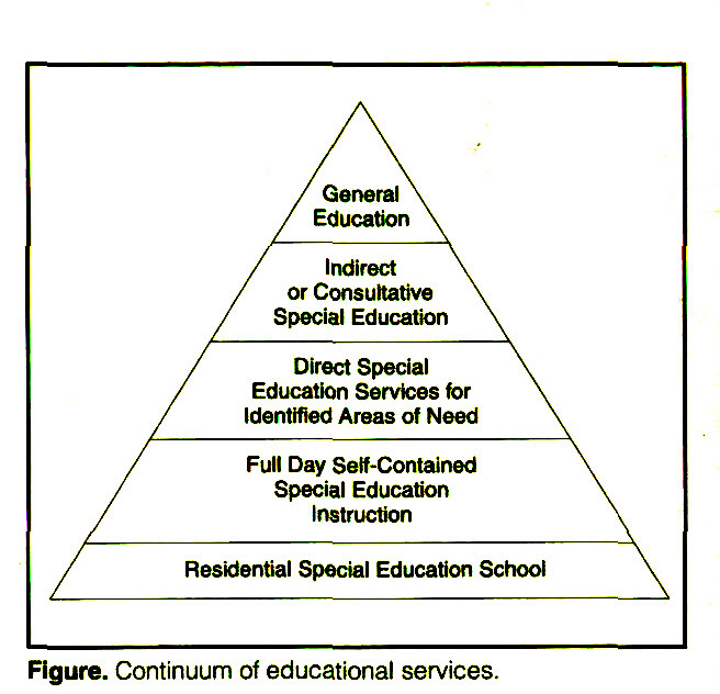 Figure. Continuum of educational services.