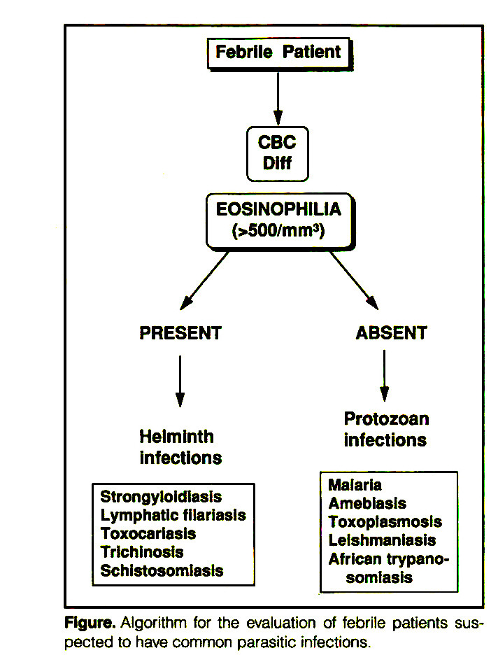 Figure. Algorithm for the evaluation of febrile patients suspected to have common parasitic infections.