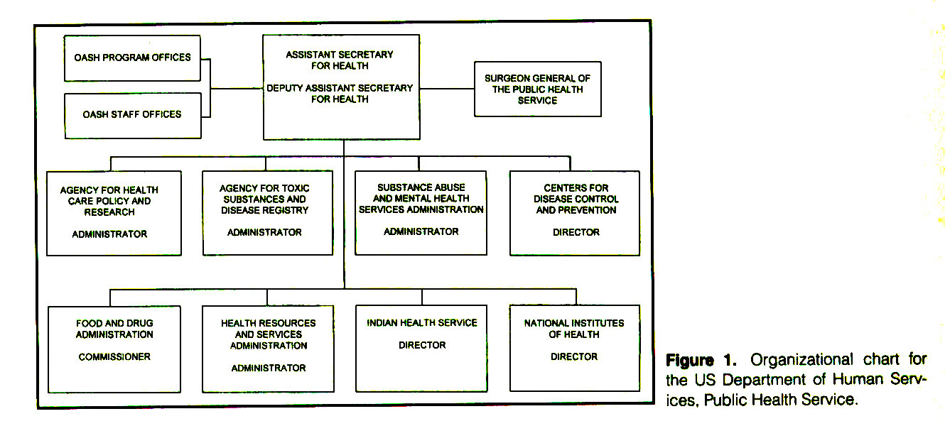 Figure 1. Organizational chart for the US Department of Human Services, Public Health Service.