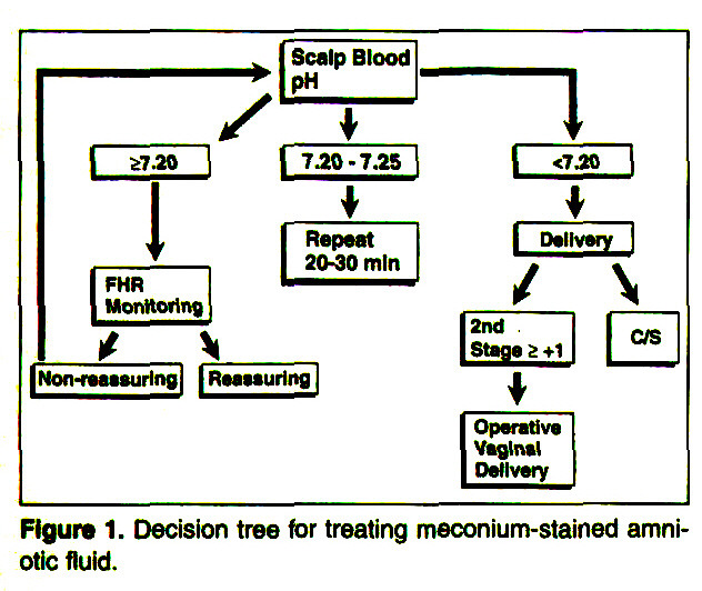 Figure 1. Decision tree for treating meconium-stained amniotic fluid.