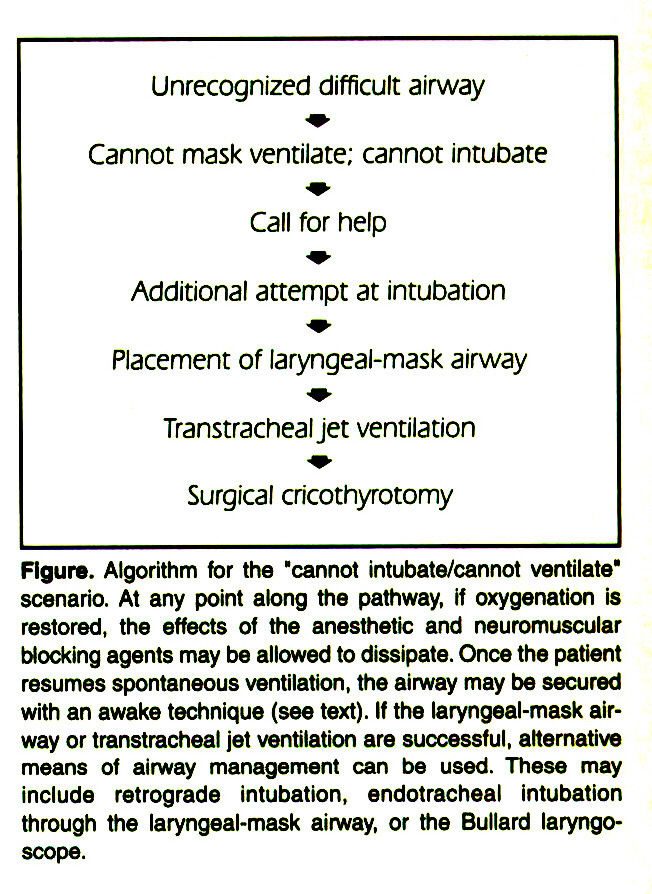 """Figure. Algorithm for the """"cannot intubate/cannot ventilate"""" scenario. At any point along the pathway, if oxygenation is restored, the effects of the anesthetic and neuromuscular blocking agents may be allowed to dissipate. Once the patient resumes spontaneous ventilation, the airway may be secured with an awake technique (see text). If the laryngeal-mask airway or transtracheal jet ventilation are successful, alternative means of airway management can be used. These may include retrograde intubation, endotracheal Intubation through the laryngeal-mask airway, or the Bullard laryngoscope."""