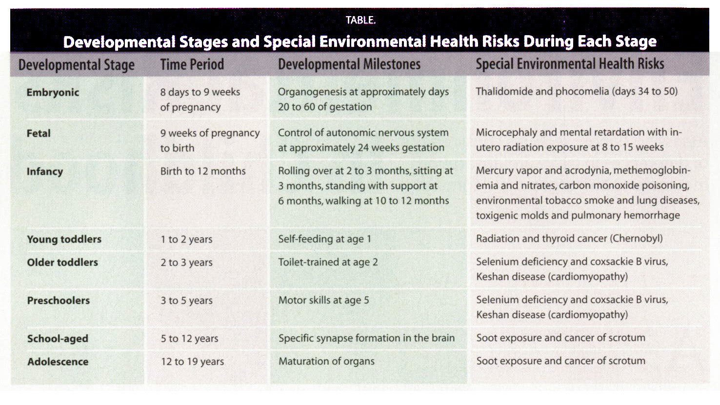 TABLE.Developmental Staqes and Special Environmental Health Risks During Each Stage