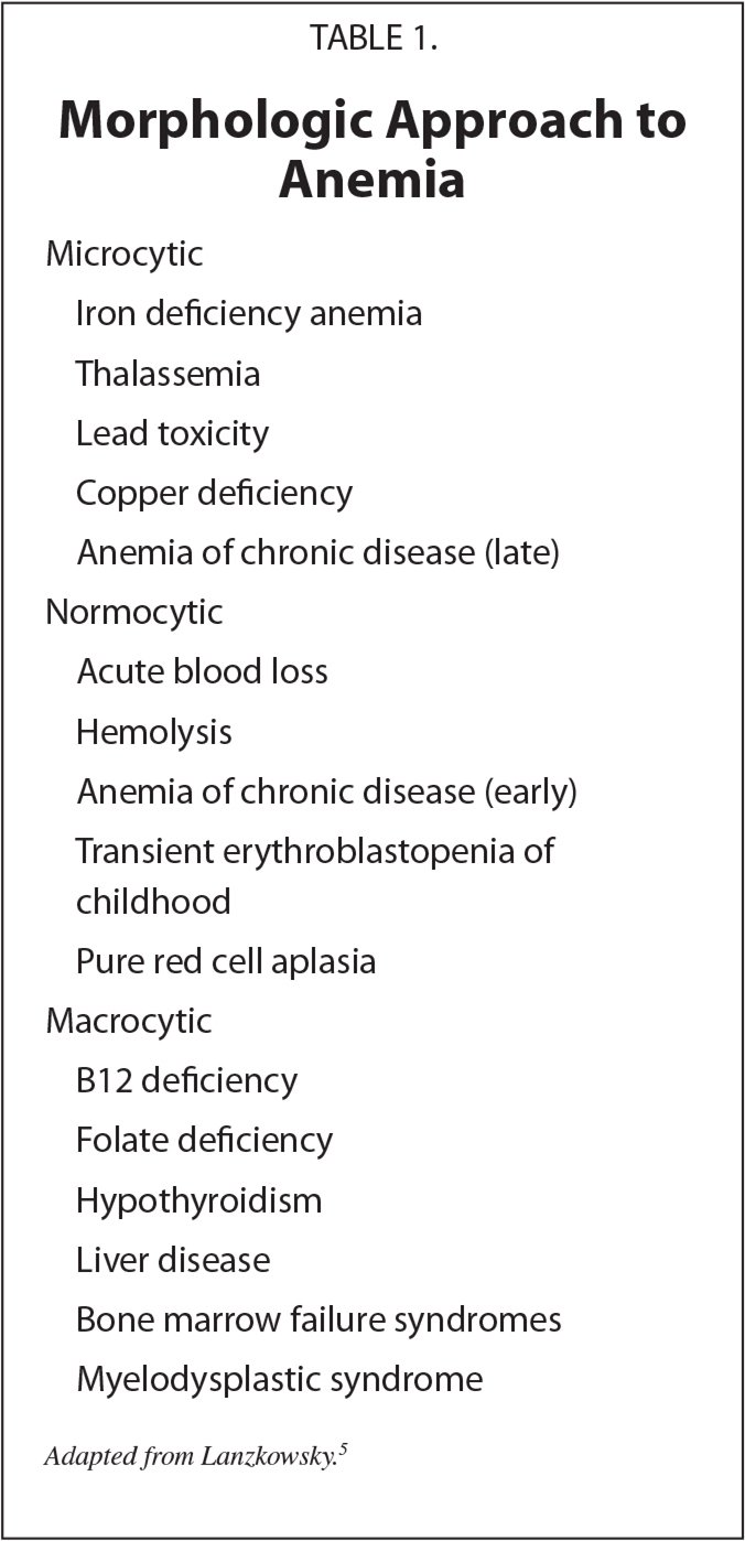 Morphologic Approach to Anemia