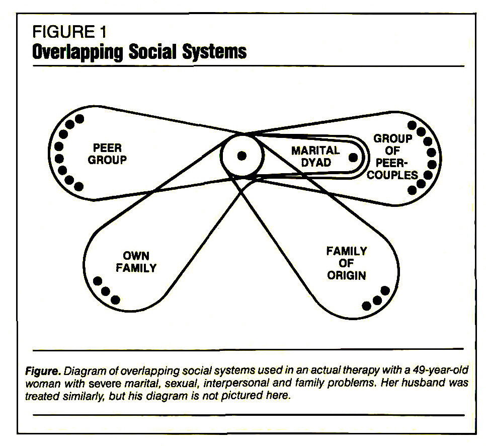 FIGURE 1Overlapping Social Systems
