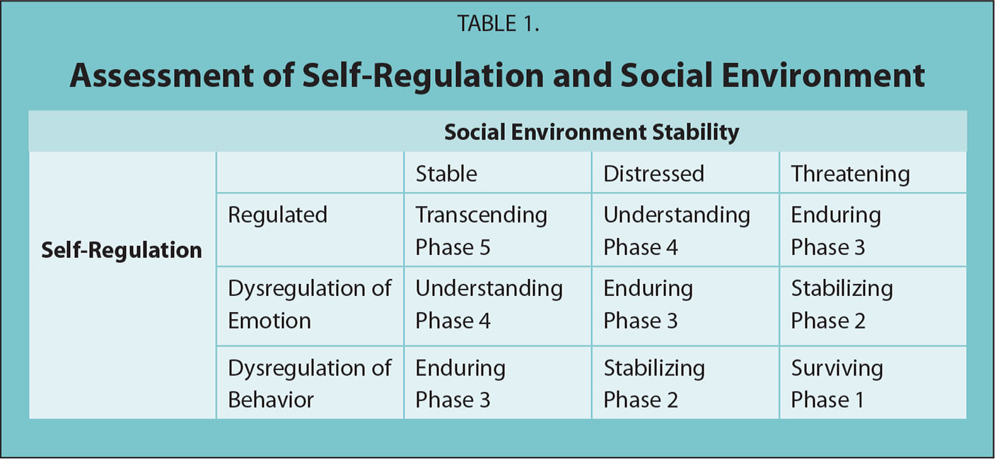 Assessment of Self-Regulation and Social Environment