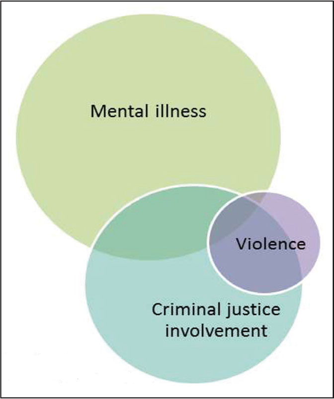 The intersection of violence, mental illness, and the criminal justice system.