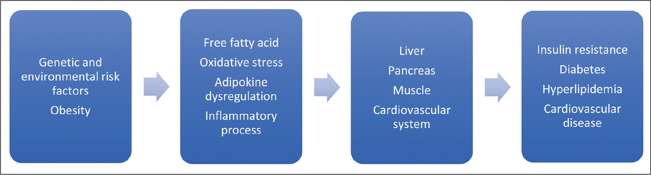 Obesity leads to increase in free fatty acids, oxidative stress, and adipokine dysregulation (increase in inflammatory and decrease in anti-inflammatory peptides/proteins), affecting multiple organ systems, which can ultimately can lead to insulin resistance, diabetes, hyperlipidemia, and cardiovascular disease.