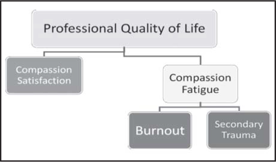 Professional Quality of Life Model (Stamm, 2012). Reprinted with permission from The Center for Victims of Torture. (2019). Professional quality of life measure.https://proqol.org/Customize_a_Presentation.html