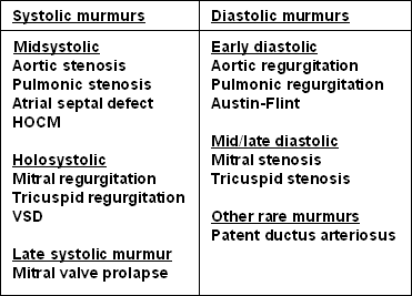 Murmur-Timing-Systole-Diastole