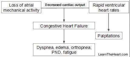 AtrialFib-Pathophysiology